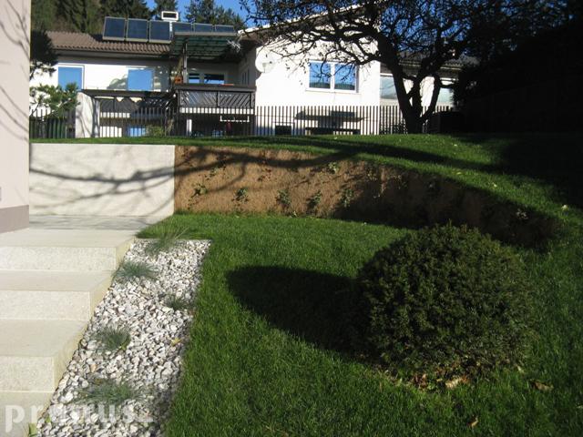 Setev trave 2