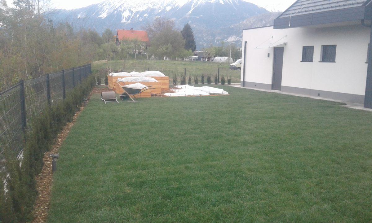 Polaganje travnega tepiha